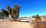 13806 Via Manana Drive - Photo 41