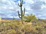 17100 Lone Mountain Road - Photo 10