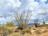 17100 Lone Mountain Road - Photo 12
