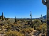 10020 Relic Rock Road - Photo 5