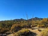 10020 Relic Rock Road - Photo 7