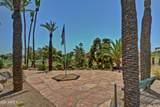 14219 Domingo Lane - Photo 50