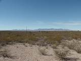 20.1 Acres Cholla Trail - Photo 12