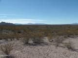 20.1 Acres Cholla Trail - Photo 2