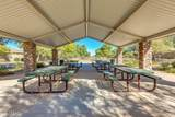 3924 Grand Canyon Place - Photo 49