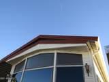 315 Saguaro Drive - Photo 51