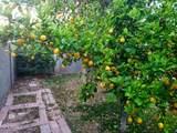 1317 Orange Street - Photo 32