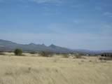 TBD Los Amigos Trail - Photo 2
