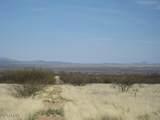 TBD Los Amigos Trail - Photo 3