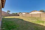 39920 Vincenza Street - Photo 40