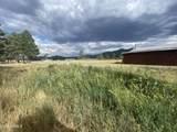 161 Golden Meadows Trail - Photo 41