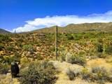 10180 Relic Rock Road - Photo 42