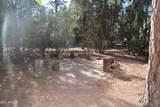 2141 Woods Drive - Photo 28