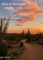 7020 Mighty Saguaro Way - Photo 47