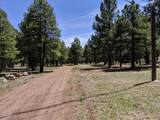990 Old Munds Highway - Photo 24
