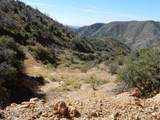 TBD 100 Ac Chiricahua National Mon Road - Photo 1