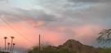 1653 Cactus Wren Drive - Photo 57