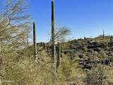 44XXX Cottonwood Canyon Road - Photo 25