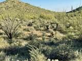 44XXX Cottonwood Canyon Road - Photo 6