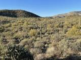 44XXX Cottonwood Canyon Road - Photo 8
