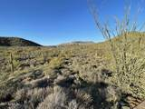44XXX Cottonwood Canyon Road - Photo 9