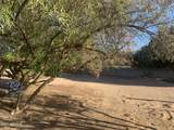 5901 Cactus Wren Road - Photo 22