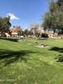 4901 Calle Los Cerros Drive - Photo 5