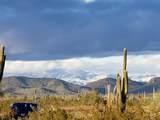 14836 Plum Road - Photo 80