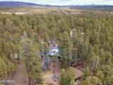 2262 Wild Oak Trail - Photo 21