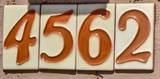 4562 Bajada Road - Photo 45