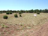 8413 Apache County Road - Photo 4