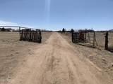 1010 Justray Ranch Road - Photo 31