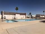 409 Barrel Cactus Lane - Photo 24