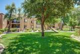 8260 Arabian Trail - Photo 7