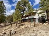 2934 Mojave Circle - Photo 3
