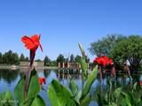 4396 Los Altos Drive - Photo 38