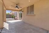 28335 Desert Native Street - Photo 35