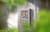 9232 Salter Drive - Photo 7
