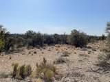 3925 Native Trail - Photo 3