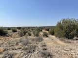 3925 Native Trail - Photo 8