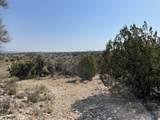 3925 Native Trail - Photo 9