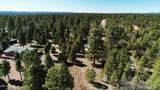1552 Bear Track Trail - Photo 10