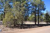 1552 Bear Track Trail - Photo 3