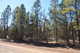 1552 Bear Track Trail - Photo 4