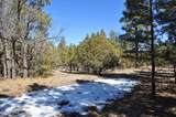 1552 Bear Track Trail - Photo 5