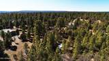 1552 Bear Track Trail - Photo 9