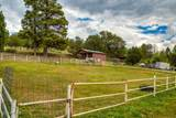 The Ranch At South Fork - Photo 89