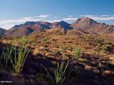 15507 Javelina Trail - Photo 5