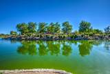 7925 Desert Blossom Way - Photo 37