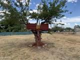 4903 Vista Grande Road - Photo 29
